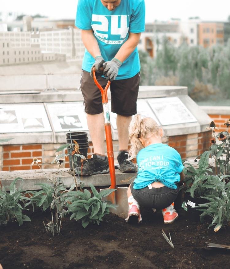 Father and daughter planting flowers